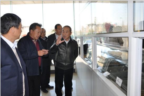 陆海新闻--杨杰总裁赴集团各公司视察工作